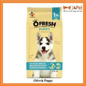 Ofresh Puppy