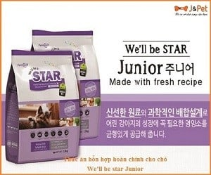 We'll Be Star Junior