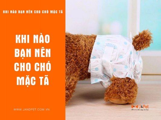 Khi Nao Ban Nen Cho Cho Mac Ta