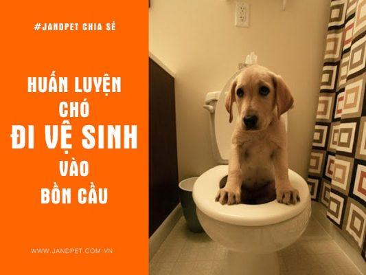 Huan Luyen Cho Di Ve Sinh Vao Bon Cau