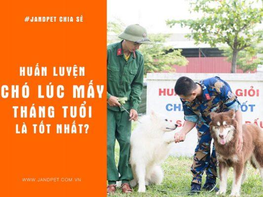 Huan Luyen Cho Luc May Thang Tuoi