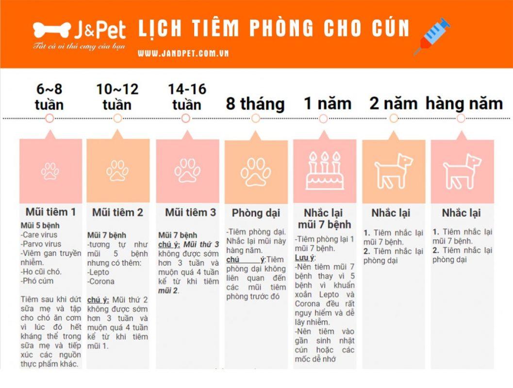 Lich Tiem Phong Cho Chu
