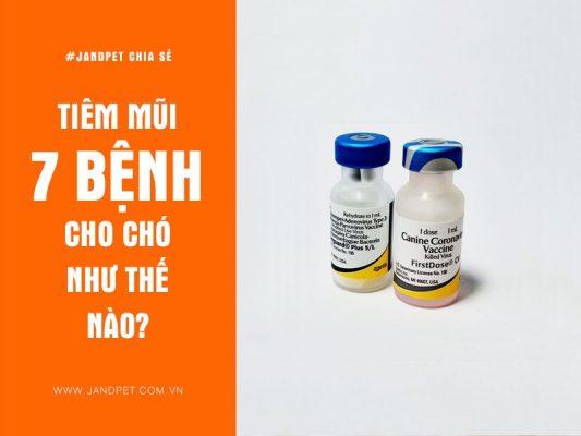 Tiem Mui 7 Benh Cho Cho