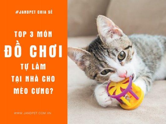 Do Choi Cho Meo