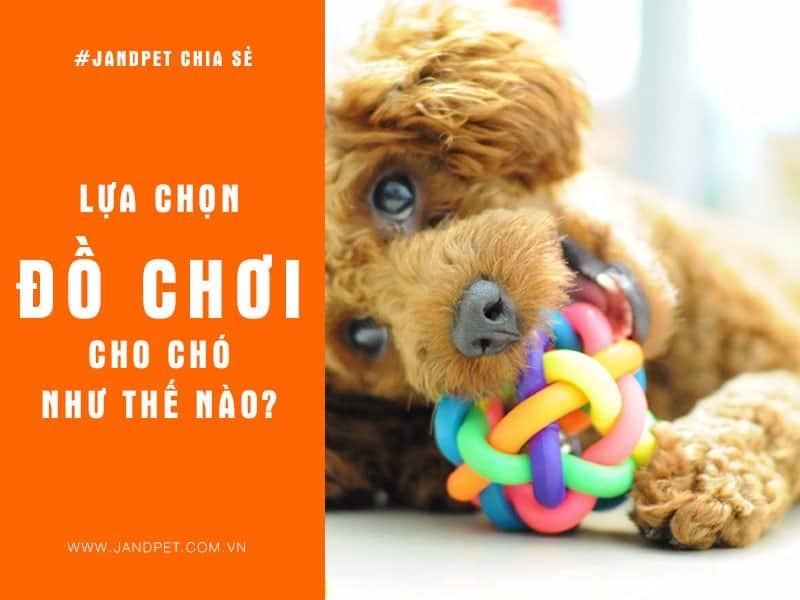 Lua Chon Do Choi Cho Cho Nhu The Nao