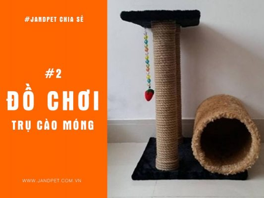 Top 3 Do Choi Tru Cao Mong Cho Meo